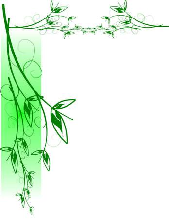 흰색 결혼식 잎 일러스트
