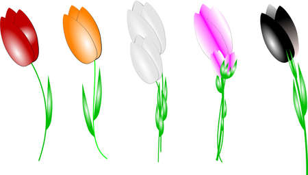 tulips in assorted colors Stock Vector - 9595617