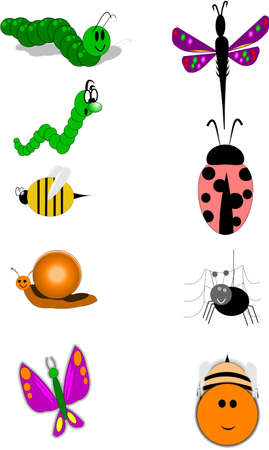 insects on white Vector