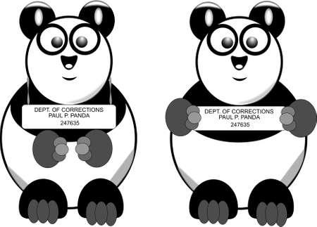 busted panda mug shot  Vector