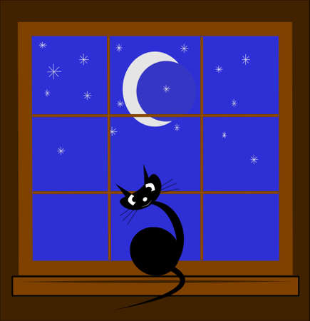 bewitched: cat in window at night Illustration