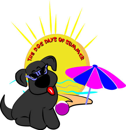 days: dog days of summer