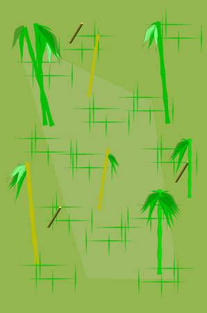 ティキ パターン