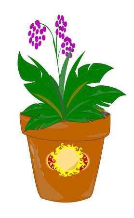 battu: pot d'argile weatherd avec la plante en fleurs
