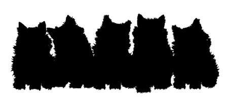 silueta de gato: gatitos en silueta con cabezas se volvieron a mostrar la expresión