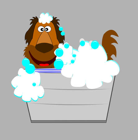 dog in bathtub  Vector