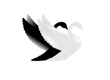 swans: acceptance concept with 2 swans in silhouette