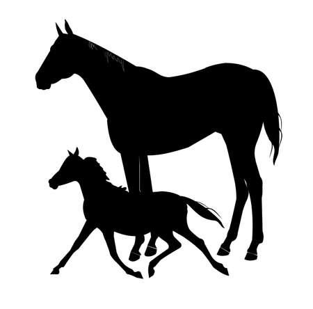 yegua: yegua y su potro