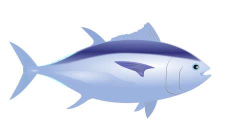 atun rojo: atún