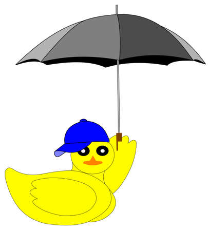 backwards: duck with umbrella and ball cap