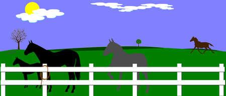 horse farm  イラスト・ベクター素材