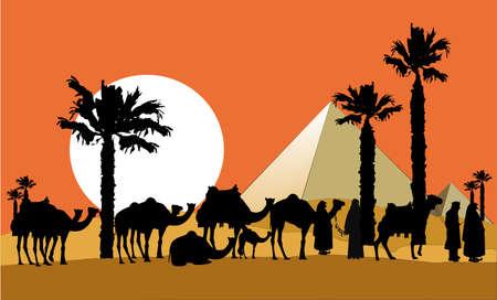 saddle camel: camel caravan background