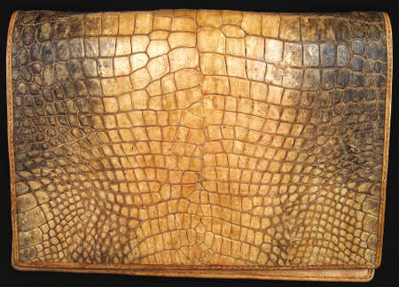 crocodile skin leather: Products from a crocodile and a snake handmade Stock Photo