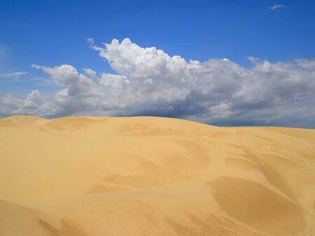 White sand dunes in Binh Thuan province, in southeastern Vietnam photo