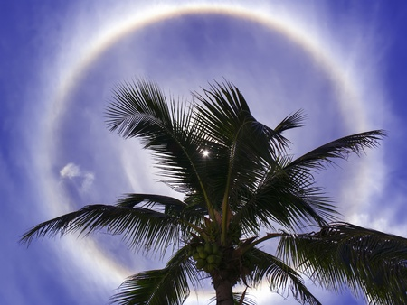 amat: Halo (optical phenomenon). Sun under Wong Amat Beach, Pattaya Thailand. Stock Photo