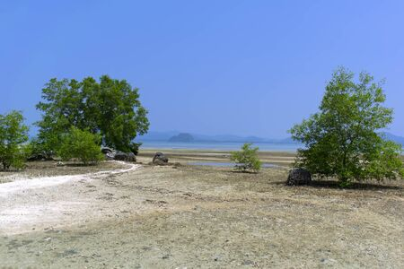 mook: Koh Mook Island Low Tide. Trang Province, South Thailand