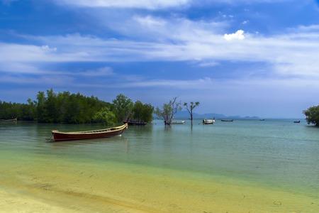 mook: Koh Mook Island Coast Line. Mangrove Trees with Longtail Boats.
