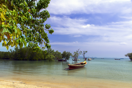 Koh Mook Island Coast Line. Mangrove Trees with Longtail Boats Stock Photo