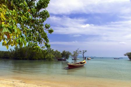 mook: Koh Mook Island Coast Line. Mangrove Trees with Longtail Boats Stock Photo