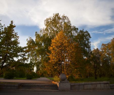 moscow city: Gold Autumn in Moscow city. Park near Lomonosov University.
