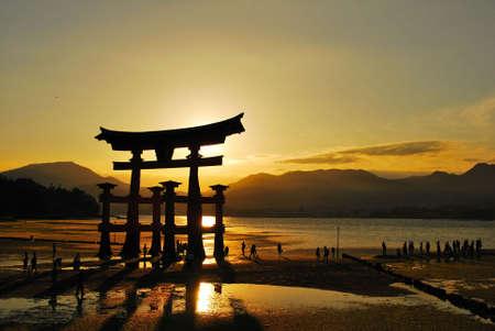 Torii gate of a shrine during beautiful sunset