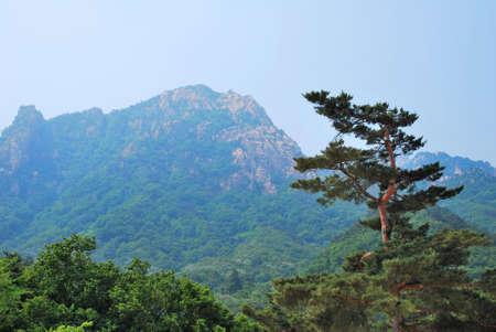 treacherous: Treacherous mountain cliffs with pointed and jagged edges