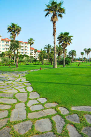 towering: Empedrado camino que conduce a los hoteles resort tropical, con enormes �rboles de coco