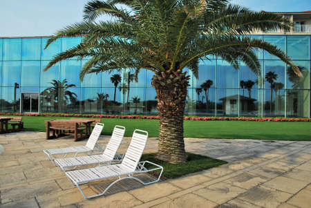 Beach chairs at a pool side with tropical coconut trees reflections. Suitable for concepts such as business and executive travel, tourism, vacation and holiday, and relaxation.