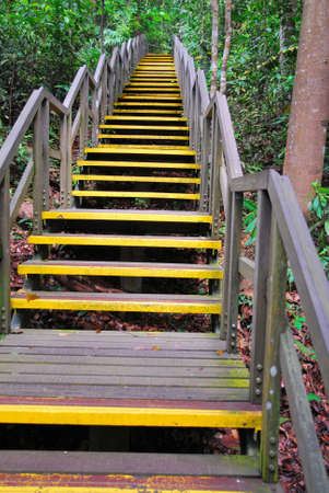 Long stretch of stairs leading high up. Symbolizes concepts such as business, economy and finance, sales and profits, life and journey, travel and relaxation, sports and trekking, and the passing of time. photo