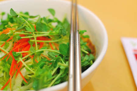 sumptuous: Sumptuous looking Chinese style vegetarian noodles topped with raw vegetable salad. Suitable for concepts such as diet and nutrition, healthy eating and lifestyle, and food and beverage.