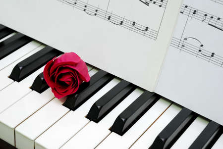 Red rose and music score on piano keyboard, signifying concepts such as love of music, creativity and love and romance.