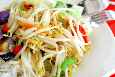 Asian healthy vegetarian meal of bean sprouts and rice. For concepts such as food and beverage, healthy eating, and diet and nutrition. photo
