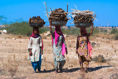india cow: RAJASTHAN, INDIA – FEB 27 : women carry a basin full of cow dung on their head on February 27, 2013 in Rajasthan, India. Cow dung will be caked, dried and used as cooking fuel for villagers in India. Editorial