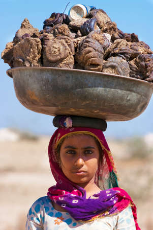 caked: RAJASTHAN, INDIA – FEB 27 : a woman carries a basin full of cow dung on her head on February 27, 2013 in Rajasthan, India. Cow dung will be caked, dried and used as cooking fuel for villagers in India. Editorial