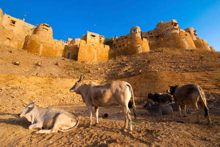 cluster house: Jaisalmer Fort showing the three different sand stone walls and the bastion houses Stock Photo