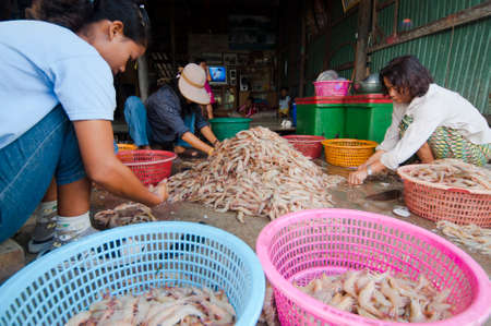 commercial fisheries: TRAD, THAILAND – MAR 9  Locals inspect and grade shrimps ready for sale on Mar 9, 2008 in Trad, Thailand   Trad is a coastal province where commercial fisheries prevail
