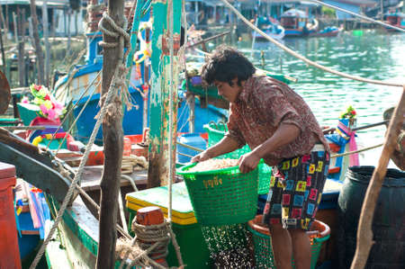 fischerei: TRAD, THAILAND - 9. M�rz Ein Fischer hebt den Korb von Garnelen aus dem Boot am 9. M�rz 2008 in der Provinz Trad, Thailand Trad eine K�stenprovinz, wo der gewerblichen Fischerei durchsetzen