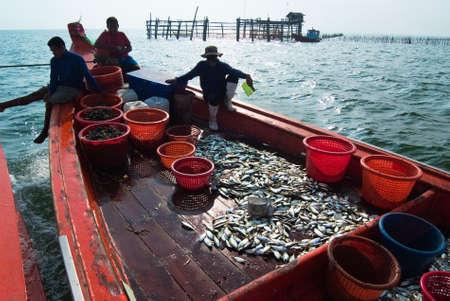 commercial fisheries: SAMUTSONGKRAM, THAILAND – DEC 10: Fishermen rest on board on Dec 10, 2010 in Samutsongkram, Thailand.  Samutsongkram is a coastal province where commercial fisheries prevail. Editorial