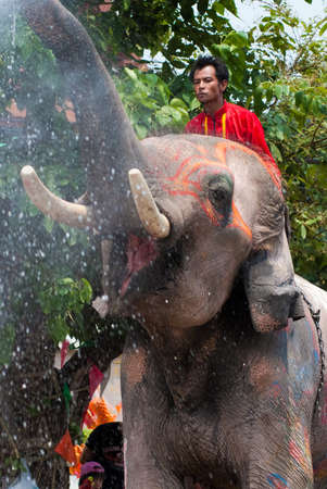 AYUTTHAYA, THAILAND - APR 14:  Elephant splashing water during Songkran Festival on Apr 14, 2014 in Ayutthaya, Thailand.  Initiated by Tourism Authority of Thailand, elephants also take part in the festival to give revelers more fun.