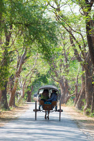 horse cart: INWA, MYANMAR - MAR 03: tourists ride on a horse-drawn carriage on Mar 3, 2015 in Inwa, Myanmar. Riding on a horse cart is the easiest way to get around Inwas narrow and dusty road to explore scatterred attractions.