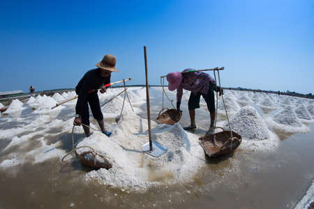 production area: SAMUTSONGKRAM, THAILAND - FEB 20: Farmers collect the ready-to-harvest salt on Feb 20, 2015 in Samutsongkram, Thailand. Samutsongkram is a big salt production area of Thailand.