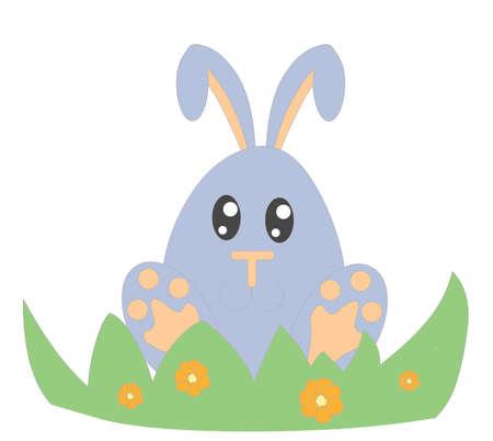 bunny Stock Photo - 13551550