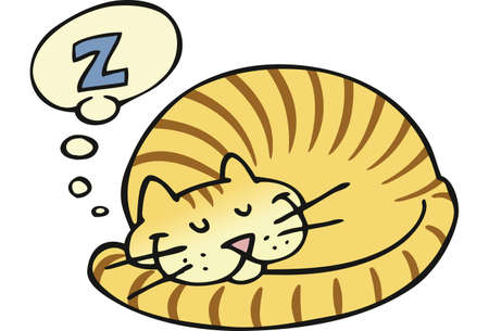 A striped cat taking a pleasant nap Stock Photo