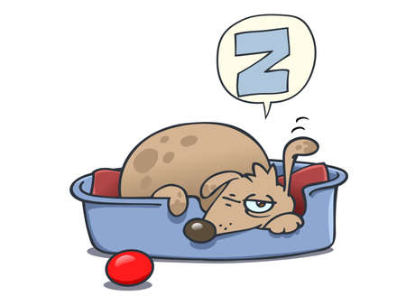 A dog almost asleep in his bed Stock Photo