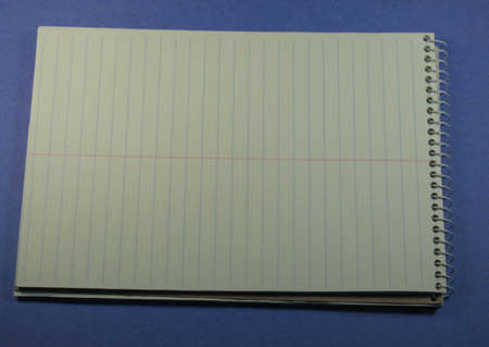 Steno notepad open at a blank page, lots of space for your text