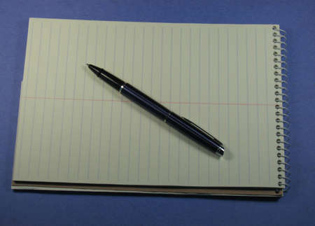 Pen and Steno notepad open at a blank page, lots of space for your text