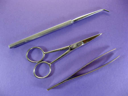 implements:  dissection type implements including scissors and tweazers