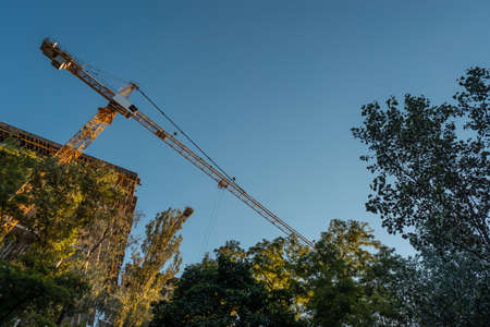 big iron construction crane working in nature in park