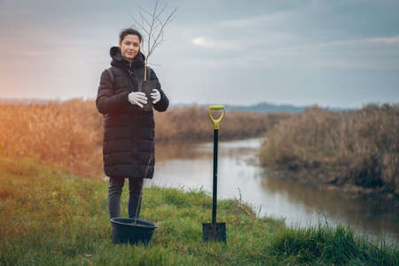 woman planting new trees with gardening tools in park near river Stok Fotoğraf