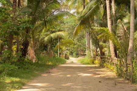 Weg door een dorp Stockfoto